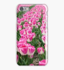 Dutch Tulips part 3 iPhone Case/Skin
