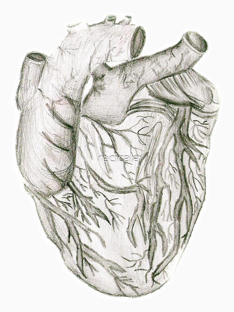 Heart by recicala