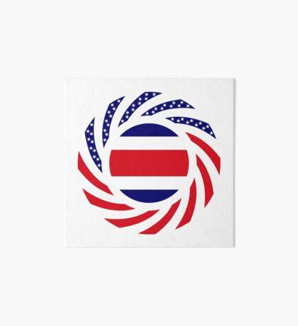 Costa Rican American Multinational Patriot Flag Series Art Board Print