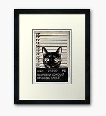 Kitty Mugshot Framed Print