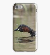 Adult Little Grebe (Tachybaptus ruficollis) feeding young out on open water. iPhone Case/Skin