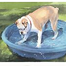boxer dog in a kiddie pool watercolor by Mike Theuer