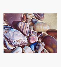 """Pallette of stones - Hallett Cove beach SA"" - detail  Photographic Print"