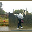 Horse and Umbrella by dOlier