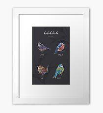 British Birds - Volume 1 Framed Print