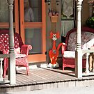 Red House Cat by phil decocco