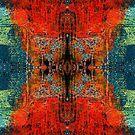 Lichen by Liz Plummer