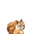Kleines Eichhörnchen von Amy Hamilton