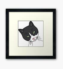 Green Eyed Tuxedo Framed Print