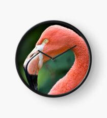 Flamingo Bird Clock