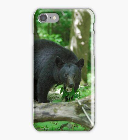 Black Bear II iPhone Case/Skin