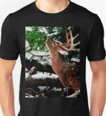 Taste O'wintergreen T-Shirt