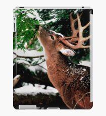 Taste O'wintergreen iPad Case/Skin