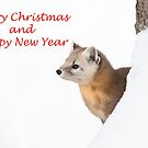 Christmas marten by Jim Cumming