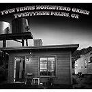 Twin Tanks Desert Homestead Cabin #2 by Peter B