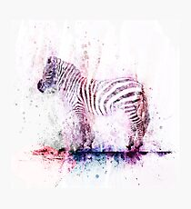 Watercolor Wash Zebra Photographic Print