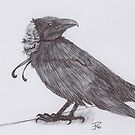 The Crow by Jessica Perner