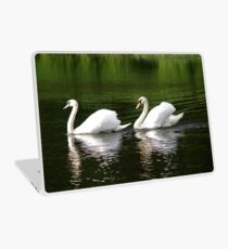 The Royal Swans of Ottawa Laptop Skin