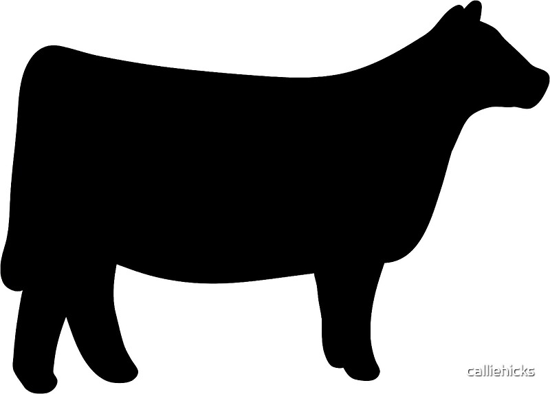 """Show Heifer"" Stickers by calliehicks 