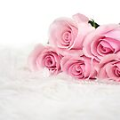 pink roses in fur by Maria Dryfhout