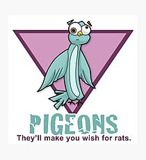 Pigeons - Wish for rats Photographic Print