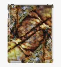 Nature Abstract iPad Case/Skin