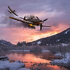 Out of Luck by Mark Donoghue + Hangar 7 Art