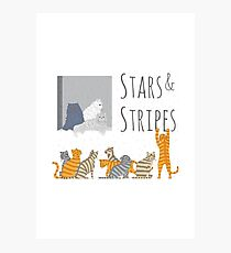 Stars&Stripes Photographic Print