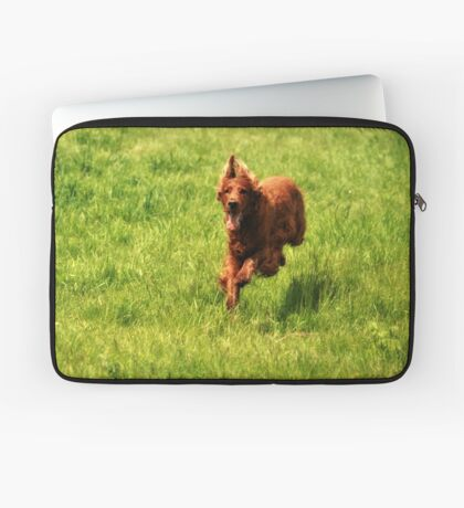 Dog Run Laptop Sleeve