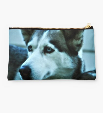 Blue Eyes Dog Studio Pouch