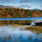 Gartmorn Dam Country Park in Clackmannanshire by Jeremy Lavender Photography