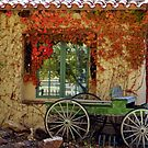 Corrales Country Cottage by © Loree McComb
