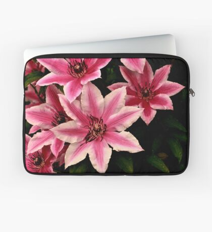Pink And White Clematis Laptop Sleeve