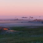 pink sunrise by annmarie-f