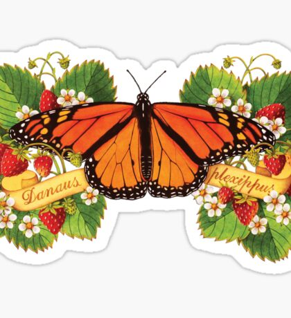 Monarch Butterfly with Strawberries Sticker