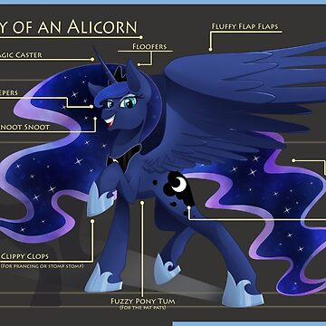 Anatomy of an Alicorn by GhostlyMuse
