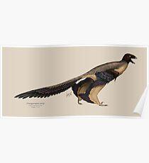 Changyuraptor yangi Poster