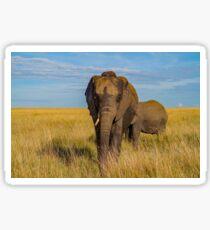 Masai Mara Elephant Sticker