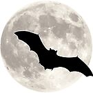 Moon with Bat Silhouette by William Fehr