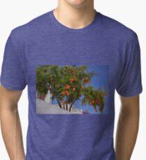Pomegranate Tree Tri-blend T-Shirt