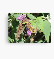 How Things Change Canvas Print