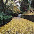 In leaves no step had trodden black by biddumy