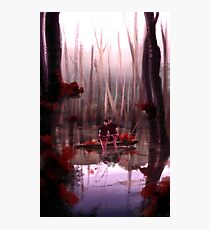 Sheith Woods Photographic Print