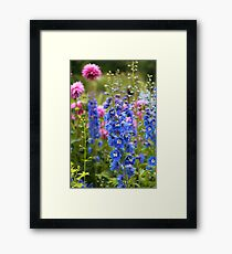 Colorful Summer Flowers Framed Print