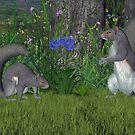 Gray Squirrels by Walter Colvin