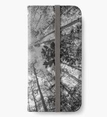 Soaring Cypress iPhone Wallet/Case/Skin