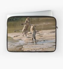 Lions Playing In Water Laptop Sleeve
