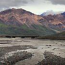 In Denali by zumi