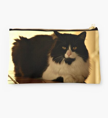 Posing for You  Studio Pouch