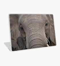 Elephant Fine Dining Laptop Skin